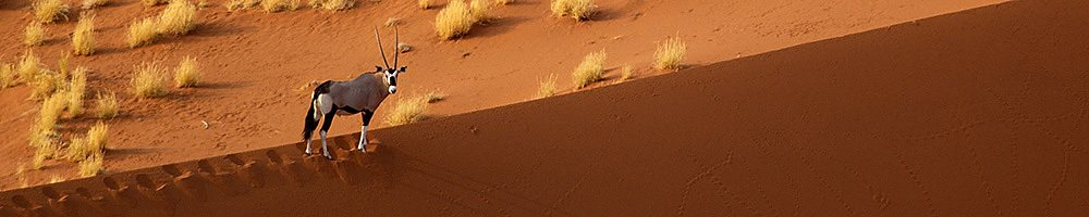 Namibie - Cr�dit photo : Jonathan Garrigues