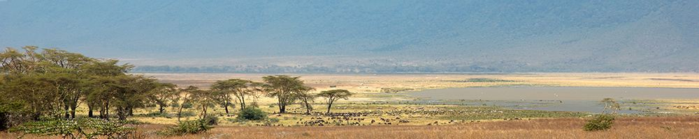 Tanzanie - Cr�dit photo : Jonathan Garrigues